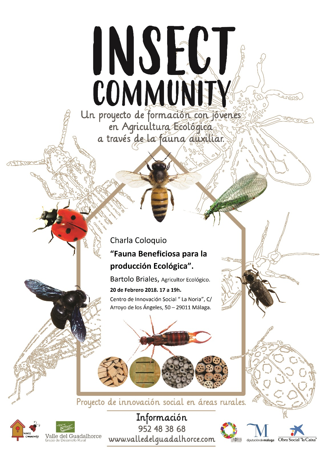 Insect Community